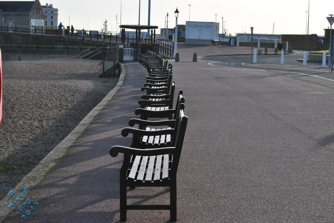 A line of benches overlooking the sea